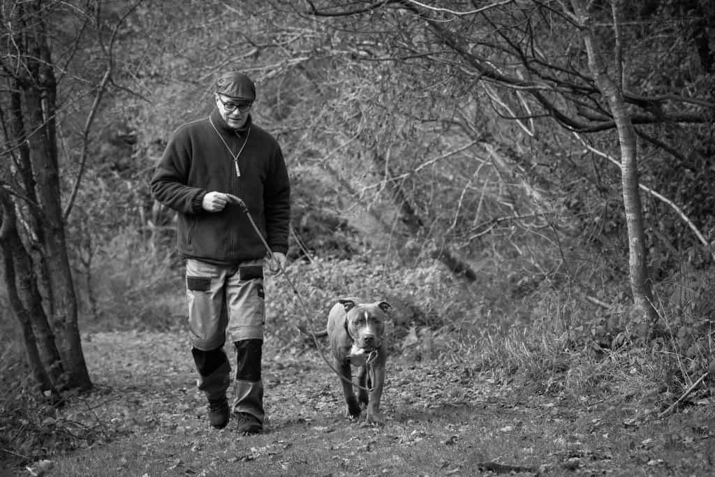 Lead pulling in Dorset: Loose lead walking