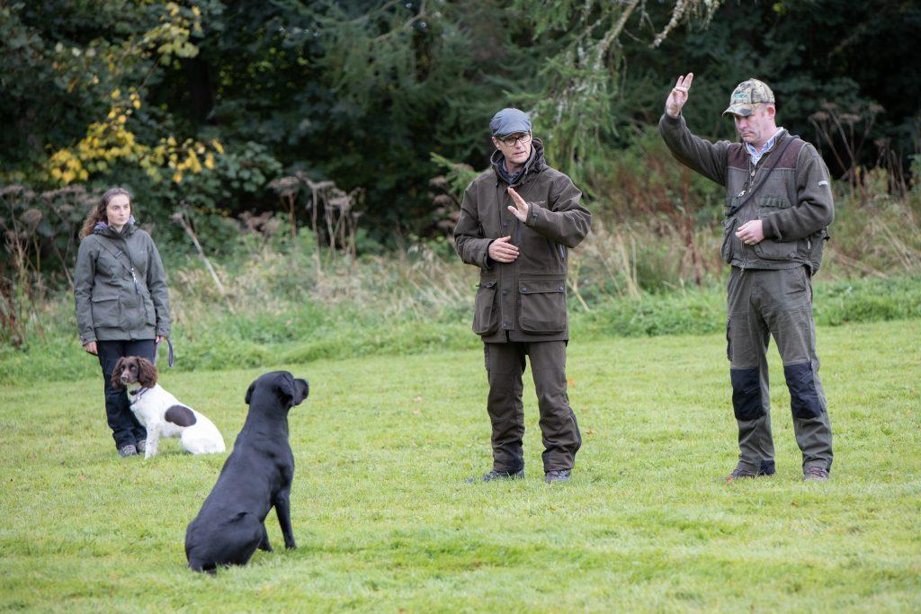 Pet gundog training in Dorset